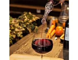 Aerador de Vinho - Prana