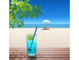 Mexedores de Drink com 6 Peças Rabo de Baleia - MR Gifts